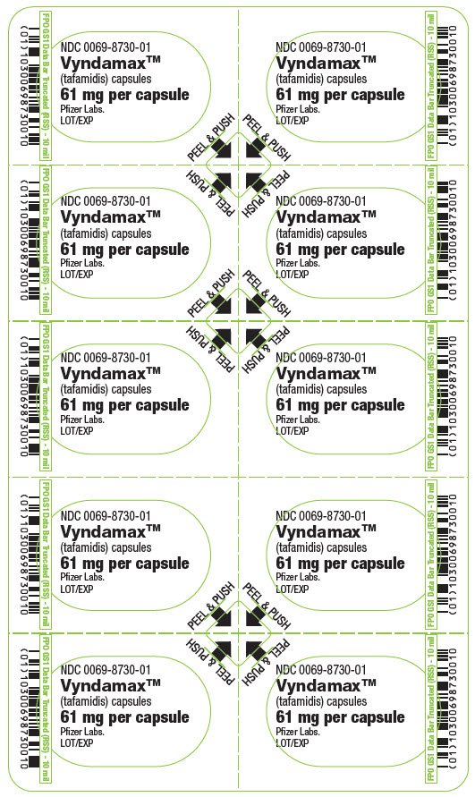PRINCIPAL DISPLAY PANEL - 61 mg Capsule Blister Card